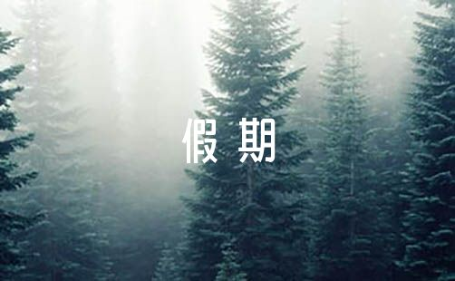 欢庆十一国庆节假期的作文600字范文(通用5篇)